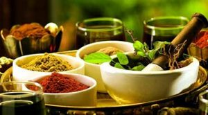 Ayurvedic Education