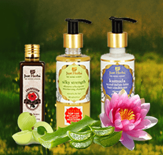 Ayurvedic Hair Care Trio For Dry And Damaged Hair